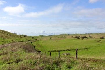 Cali green hills