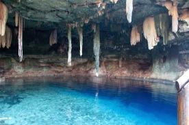 Cenote paradise!