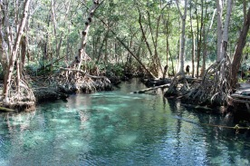 Sweet water lagoon