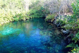 Cenote near Cavelands