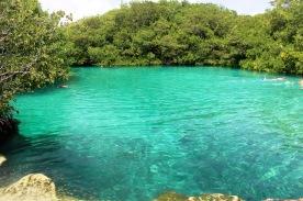 Sweet water cenote near Tulum