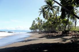Lush meets beach